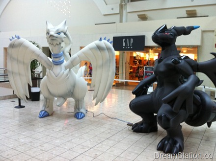 Reshiram and Zekrom Blowups